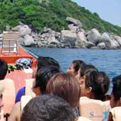 Koh Tao Tour day trip