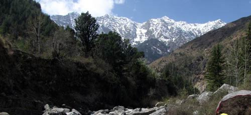 mountains  McLeod Ganj