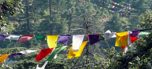 pray flags in McLeod Ganj