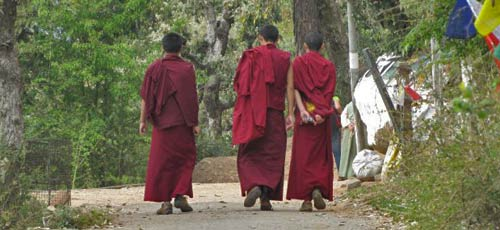 budhist monks of McLeod Ganj